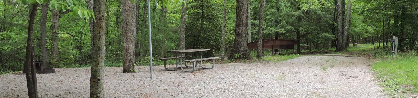 Trees surround parking and tent pad with picnic tableSite 2