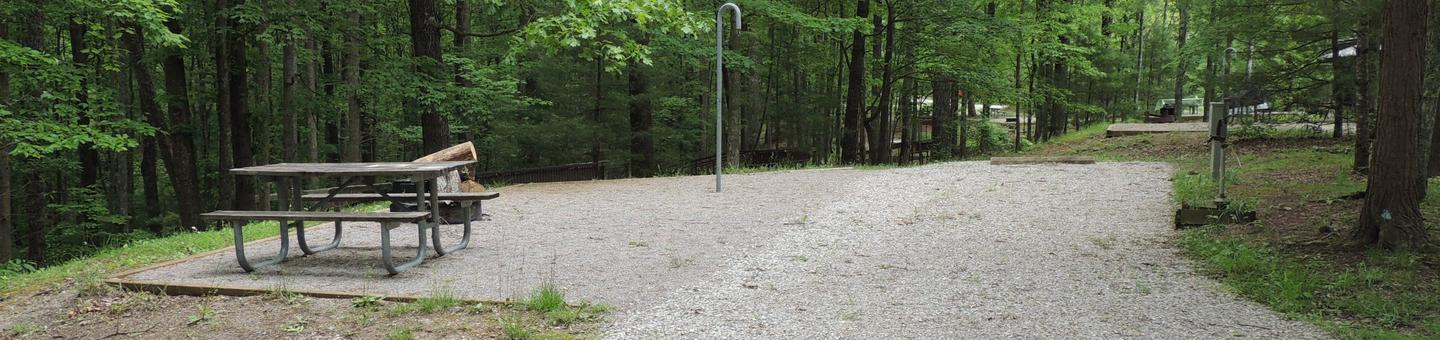 Gravel parking spot next to tent pad with picnic table and lantern hook. The site is surrounded by green trees.Site 8