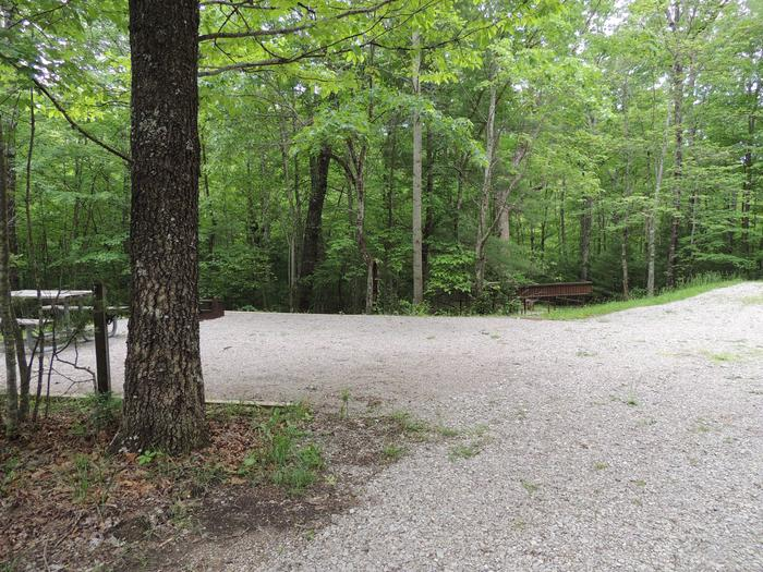 Gravel parking site next to picnic table near the green trees surrounding the site.Site 17