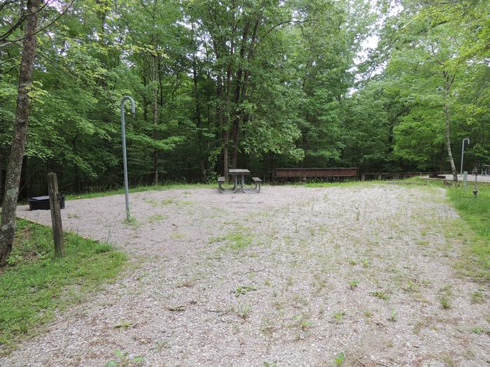 Picnic table sits on gravel tent pad surrounded by green trees.Site 19