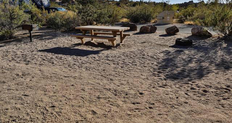 Jumbo Rocks site 84View of campsite