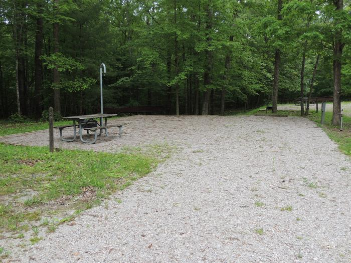 Picnic table sits on gravel tent pad surrounded by green trees.Site 20