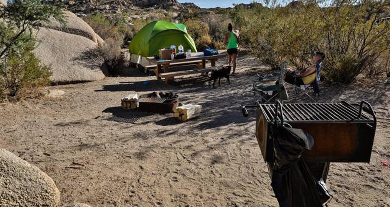Jumbo Rocks site 86View of campsite