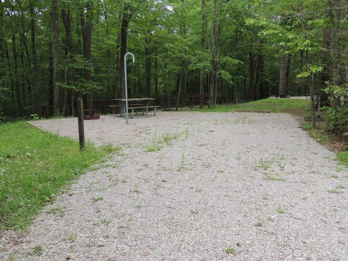 Picnic table sits on gravel tent pad surrounded by green trees.Site 22