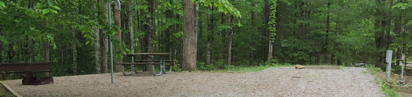 Picnic table sits on gravel tent pad surrounded by green trees.Site 24