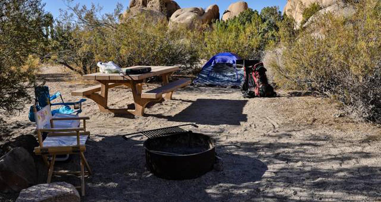 Jumbo Rocks site 88View of campsite
