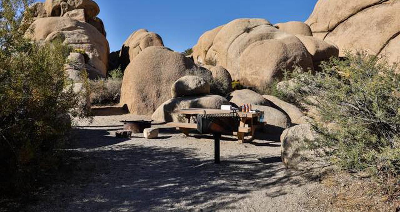 Jumbo Rocks site 89View of campsite