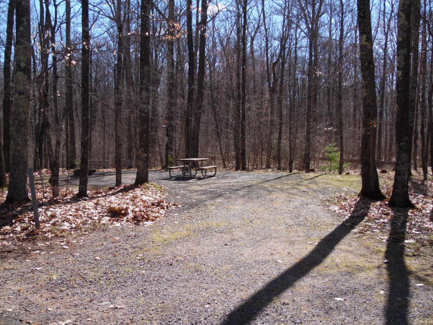 Two Lakes Campground site #23 with picnic table and fire pit view among the trees.