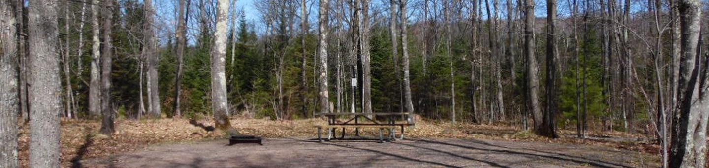 Two Lakes Campground site #25 with picnic table and fire pit view among the trees.