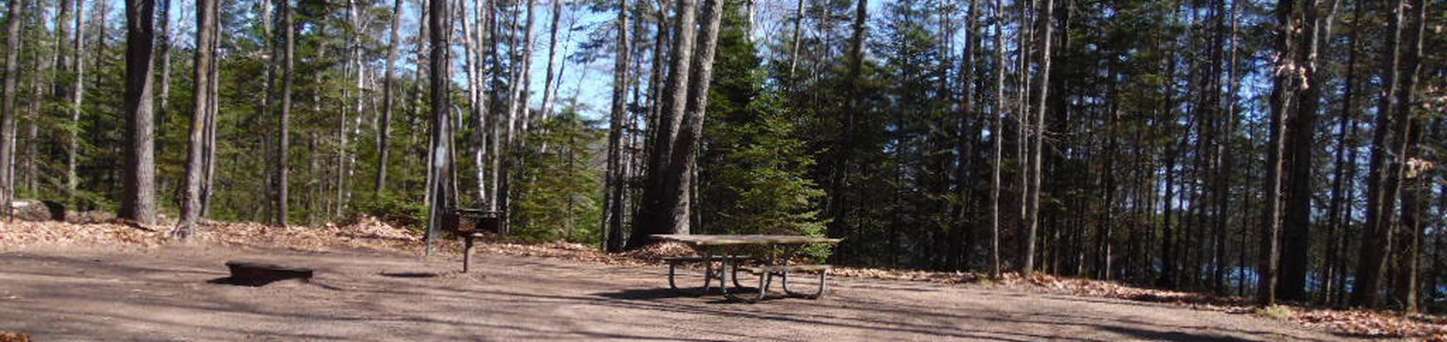 Two Lakes Campground site #32 with picnic table and fire pit view among the trees.