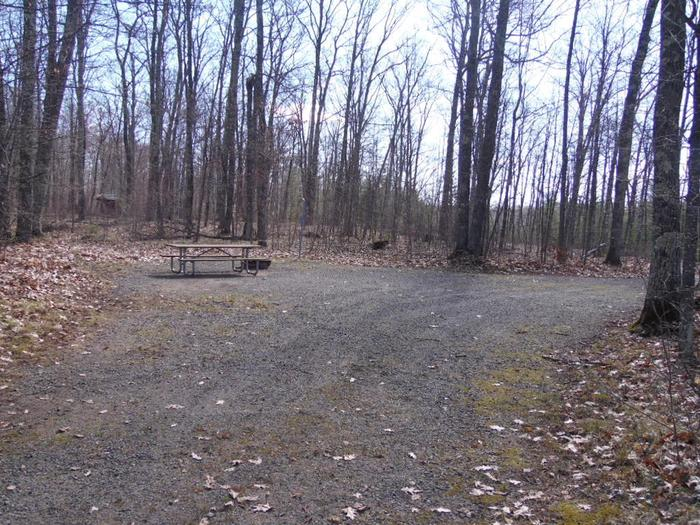 Two Lakes Campground site #56 with picnic table and fire pit view among the trees.