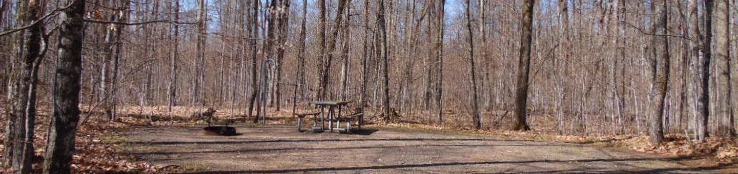 Two Lakes Campground site #77 with picnic table and fire pit view among the trees.