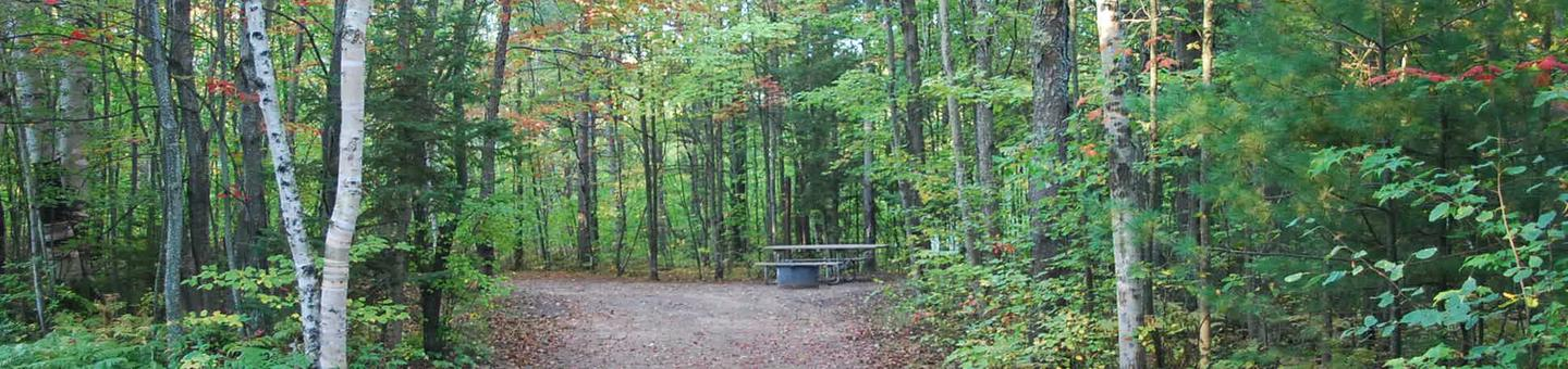 Bay Furnace Campground site #02; heavily treed site with picnic table and fire pit.