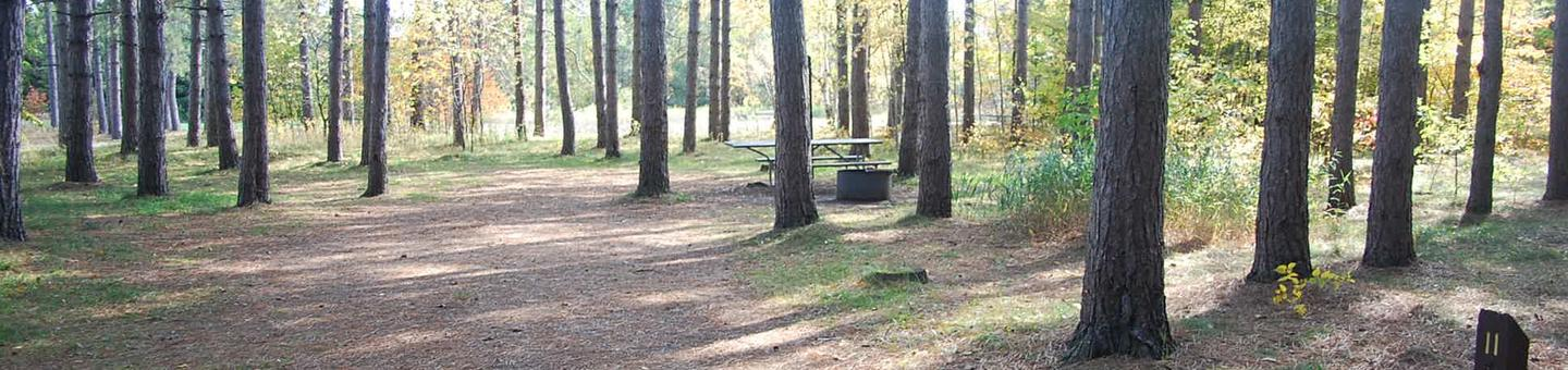 Bay Furnace Campground site #11; heavily treed site with picnic table and fire pit.