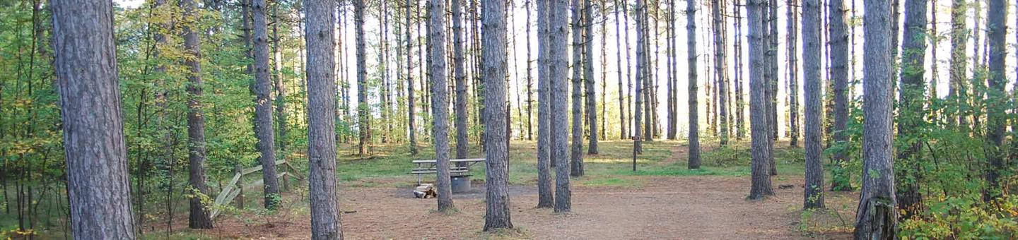 Bay Furnace Campground site #13; heavily treed site with picnic table and fire pit.