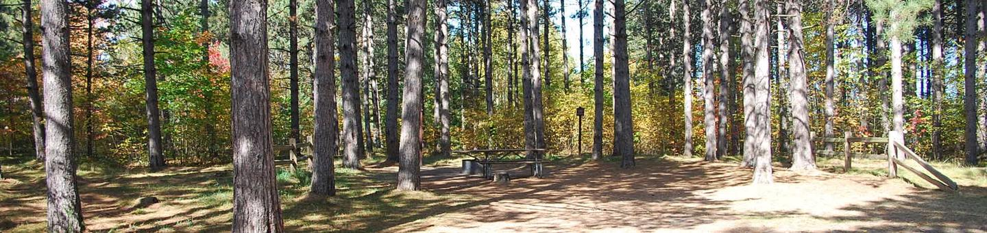 Bay Furnace Campground site #15; heavily treed site with picnic table and fire pit.