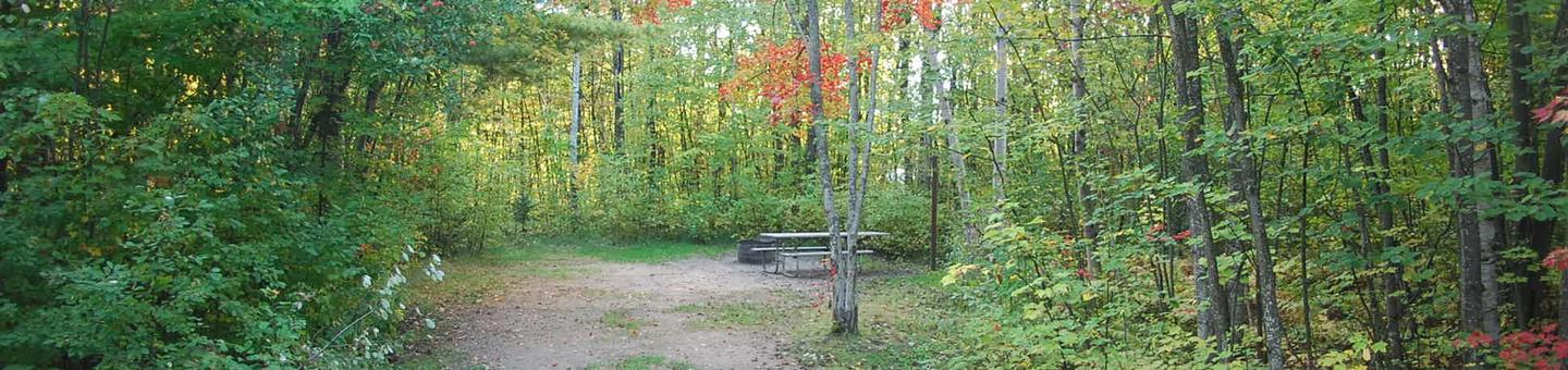 Bay Furnace Campground site #17; heavily treed site with picnic table and fire pit.