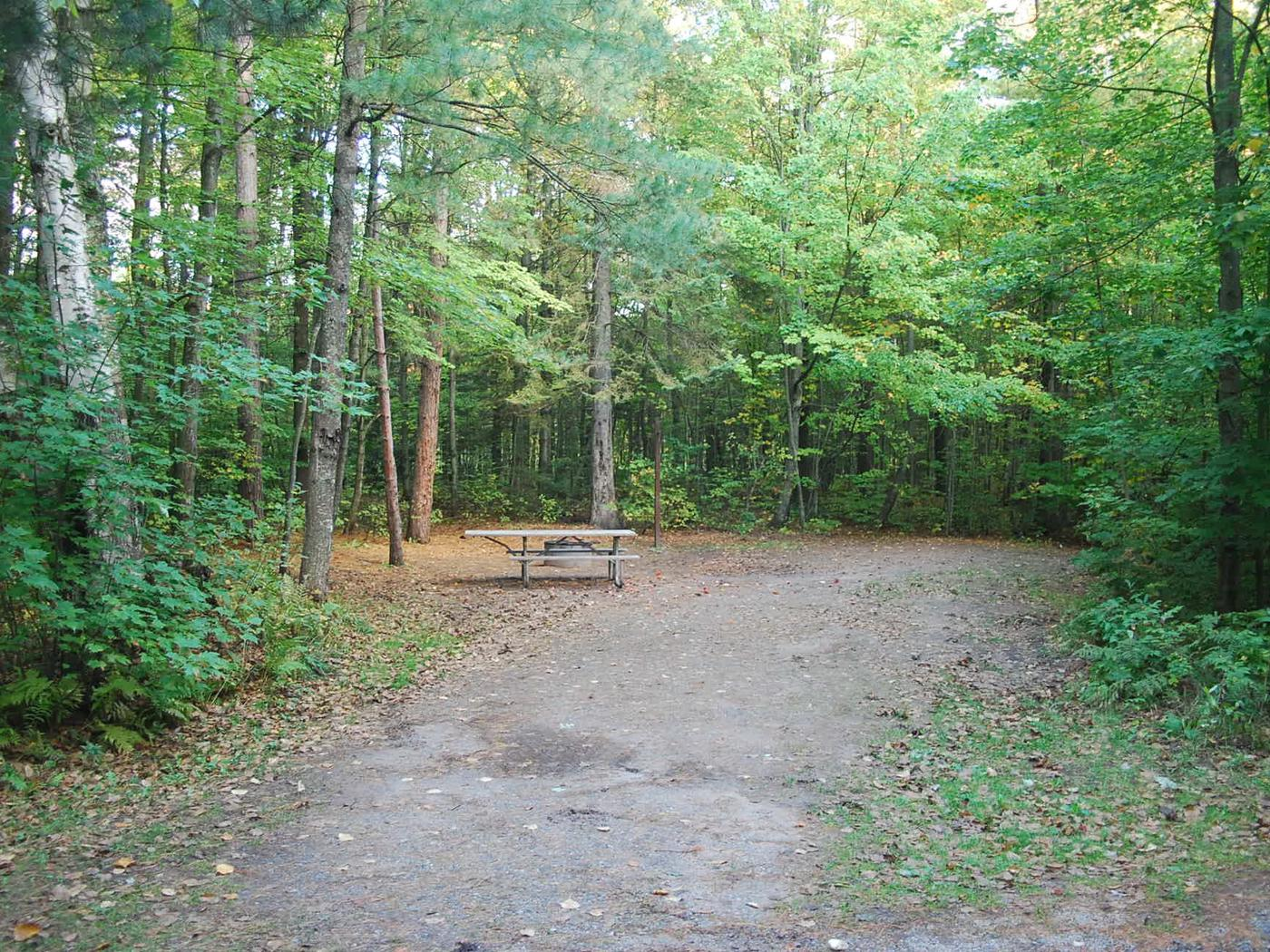 Bay Furnace Campground site #19; heavily treed site with picnic table and fire pit.