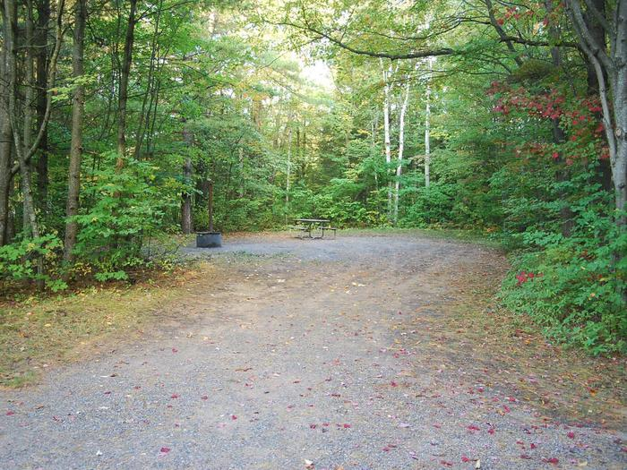 Bay Furnace Campground site #21; heavily treed site with picnic table and fire pit.