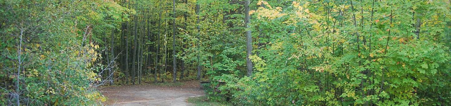 Bay Furnace Campground site #22; heavily treed site with picnic table and fire pit.