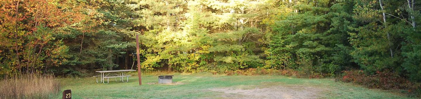 Bay Furnace Campground site #23; heavily treed site with picnic table and fire pit.