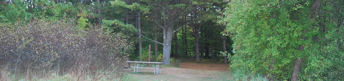 Bay Furnace Campground site #28; heavily treed site with picnic table and fire pit.