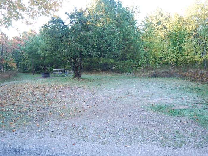 Bay Furnace Campground site #31; heavily treed site with picnic table and fire pit.