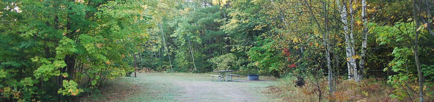 Bay Furnace Campground site #33; heavily treed site with picnic table and fire pit.