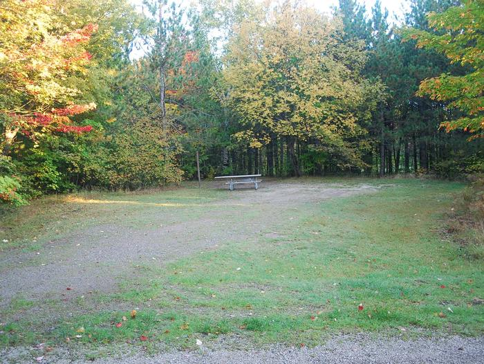 Bay Furnace Campground site #35; heavily treed site with picnic table and fire pit.