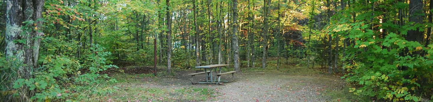 Bay Furnace Campground site #36; heavily treed site with picnic table and fire pit.