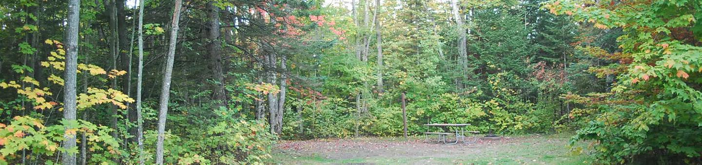 Bay Furnace Campground site #37; heavily treed site with picnic table and fire pit.