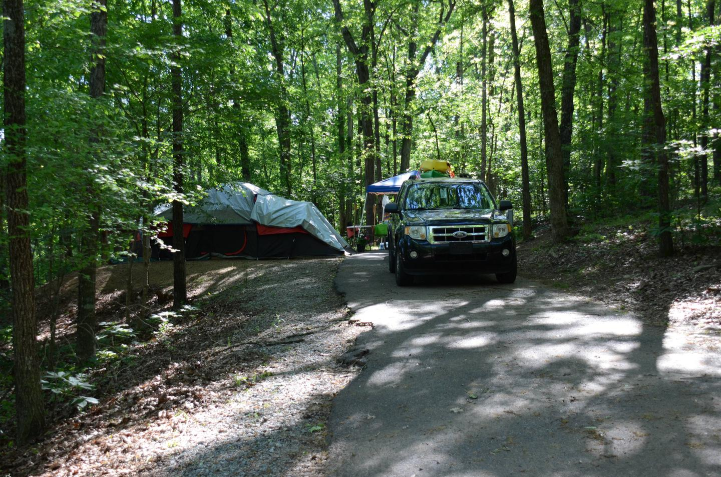 Driveway slope, awning-side clearance.McKinney Campground, site 7