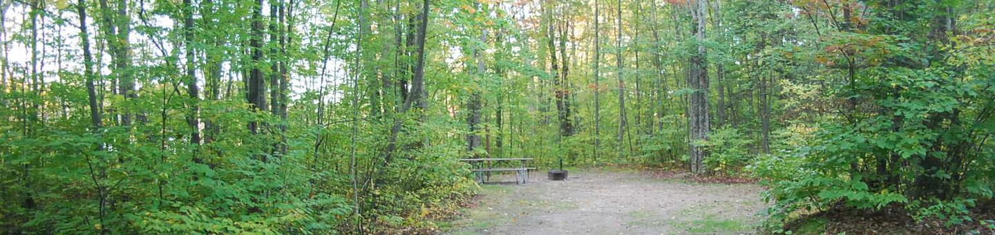 Bay Furnace Campground site #39; heavily treed site with picnic table and fire pit.