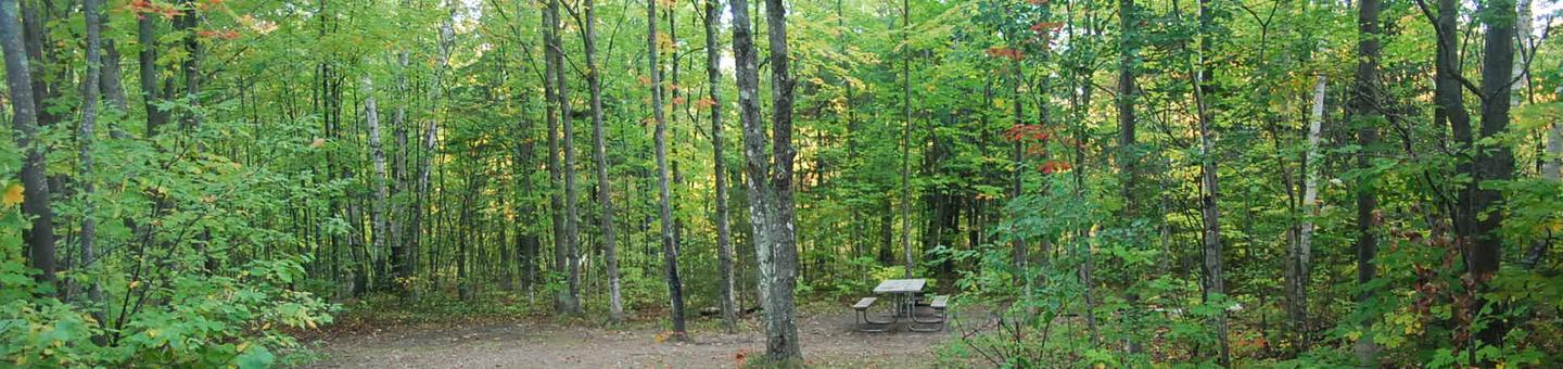 Bay Furnace Campground site #40; heavily treed site with picnic table and fire pit.