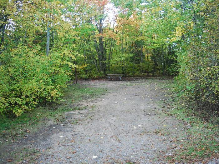 Bay Furnace Campground site #43; heavily treed site with picnic table and fire pit.