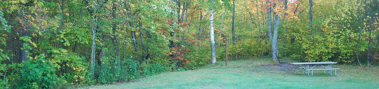 Bay Furnace Campground site #47; heavily treed site with picnic table and fire pit.