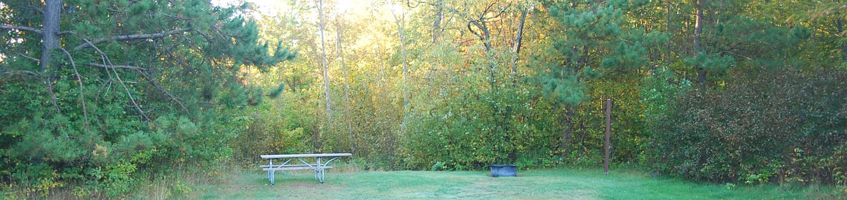 Bay Furnace Campground site #48; heavily treed site with picnic table and fire pit.