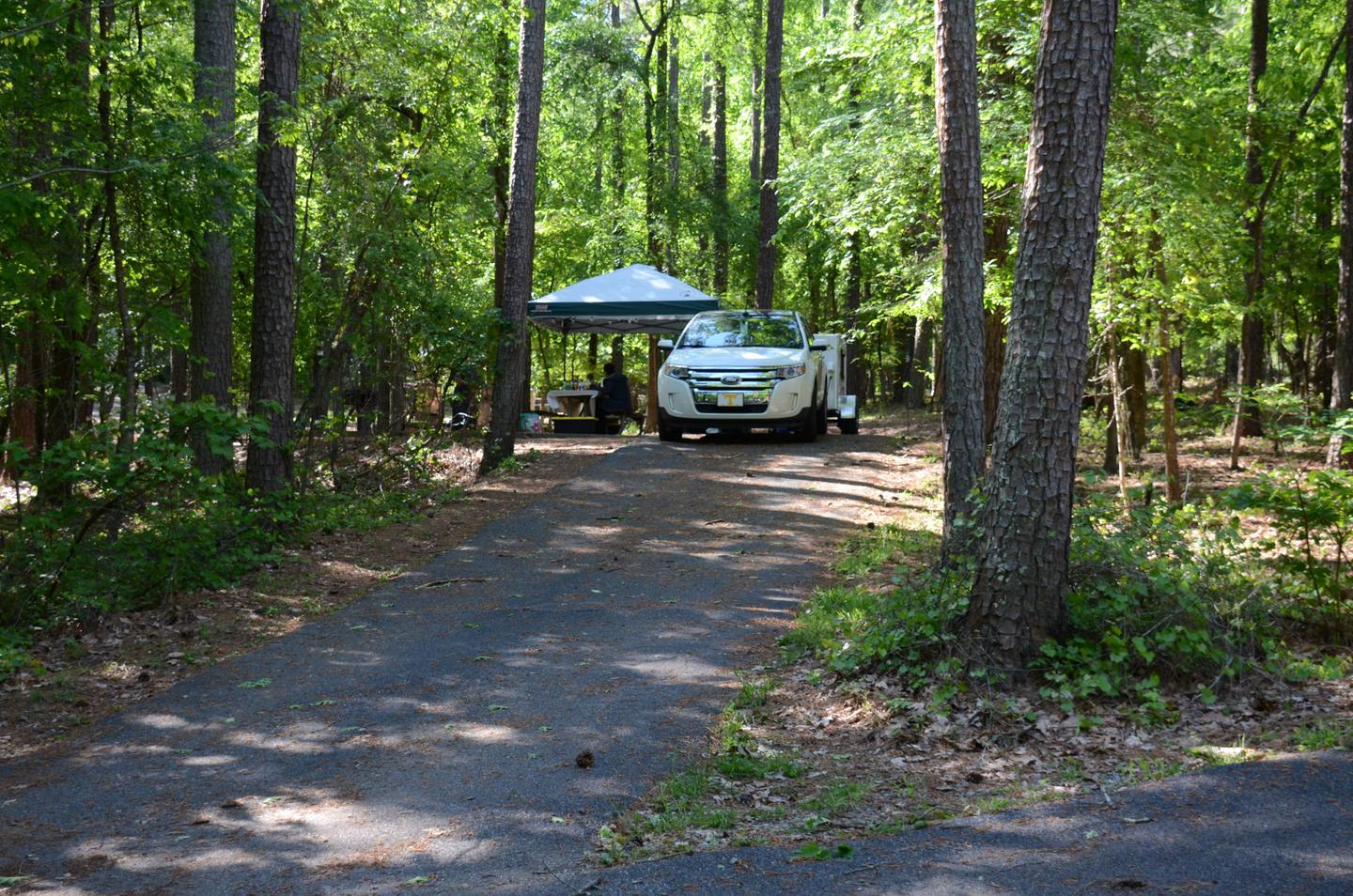 Driveway slope, utilities-side clearance.McKinney Campground, campsite 11.