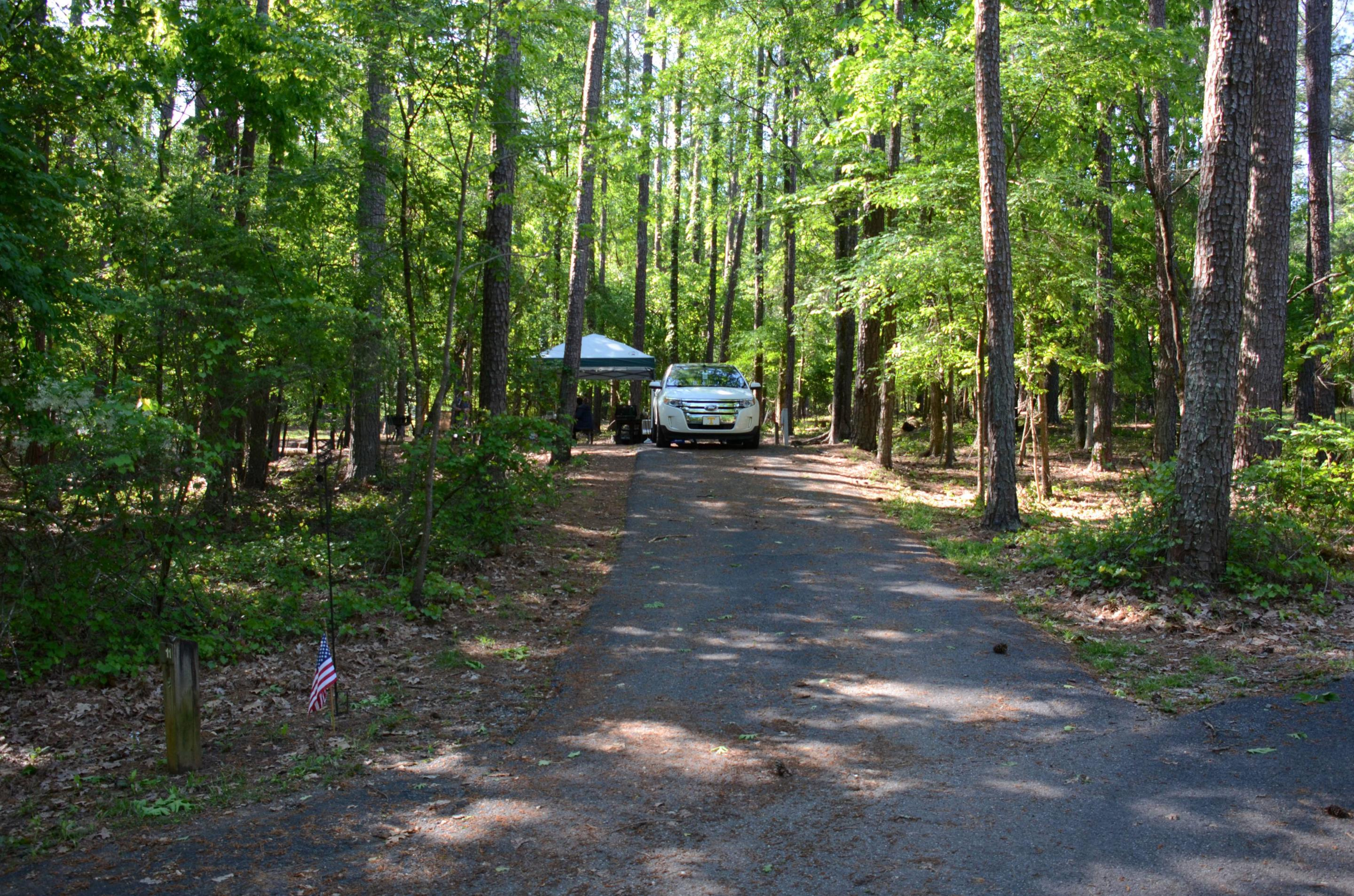 Driveway slope, awning-side clearance.McKinney Campground, campsite 11.