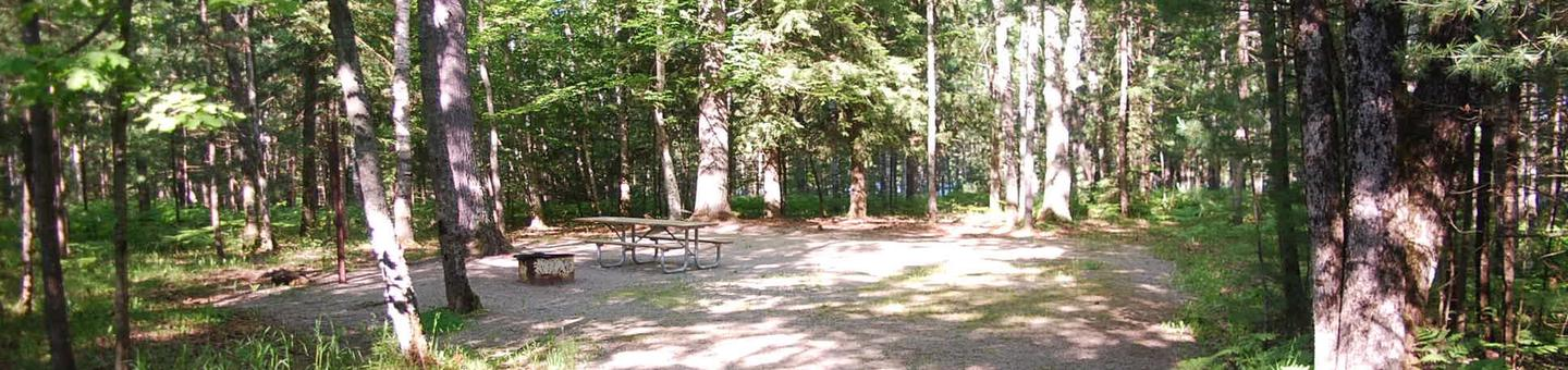 Camp Seven Campground site #03 picnic table and fire pit among the trees.