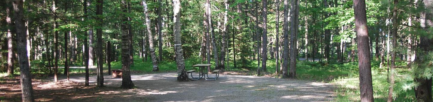 Camp Seven Campground site #07 picnic table and fire pit among the trees.