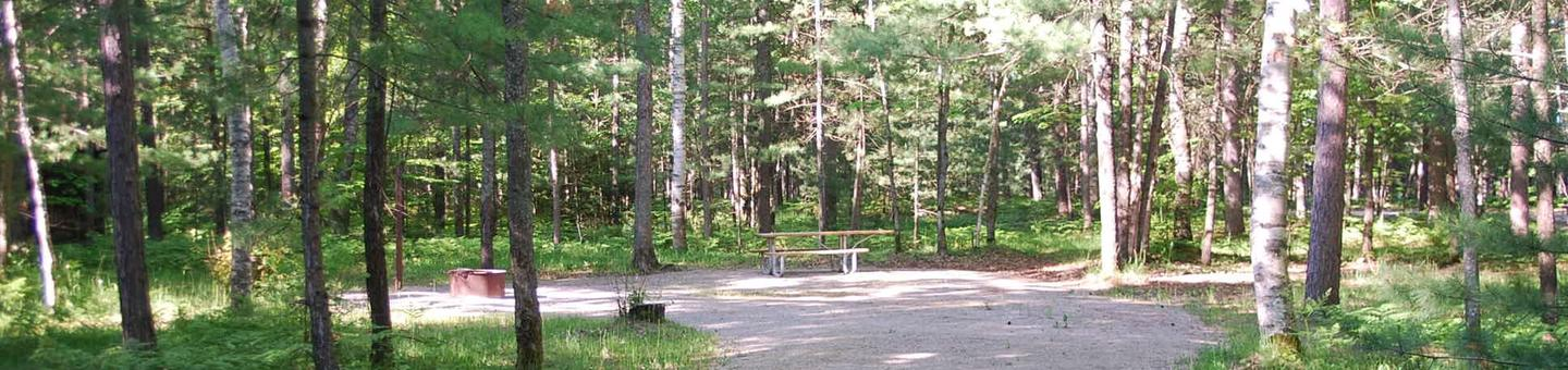 Camp Seven Campground site #10 picnic table and fire pit among the trees.