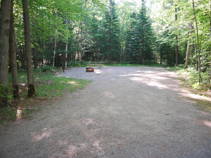 Camp Seven Campground site #09 picnic table and fire pit among the trees.