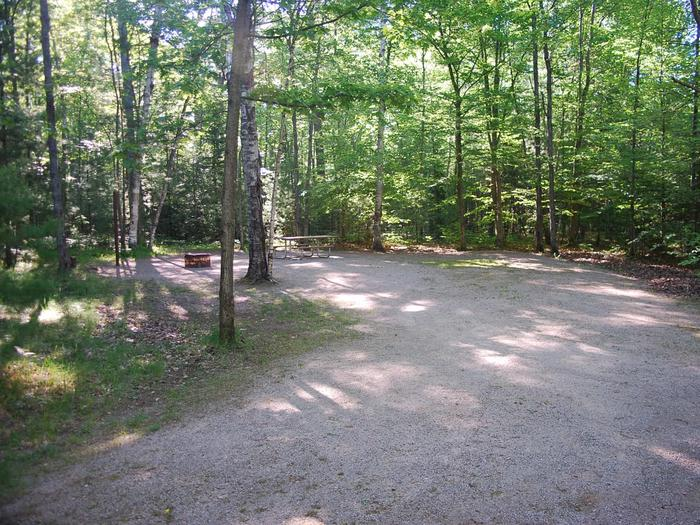 Camp Seven Campground site #11 picnic table and fire pit among the trees.