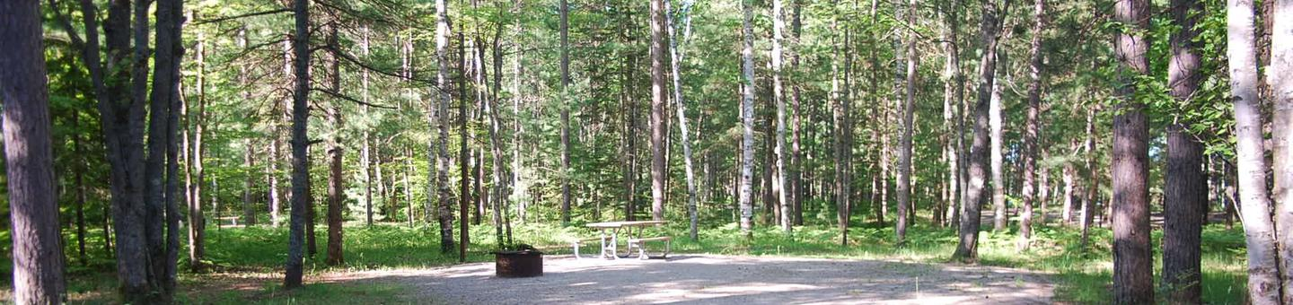 Camp Seven Campground site #12 picnic table and fire pit among the trees.
