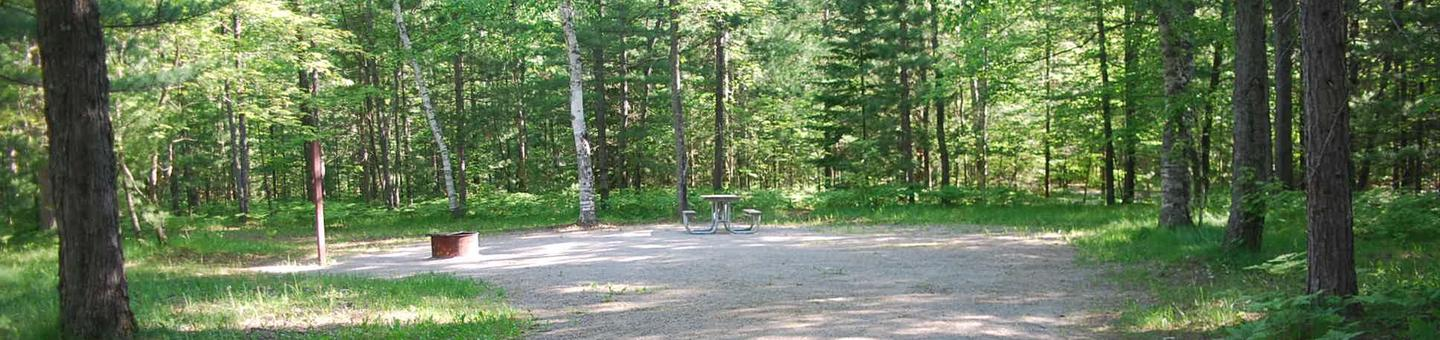 Camp Seven Campground site #25 picnic table and fire pit among the trees.