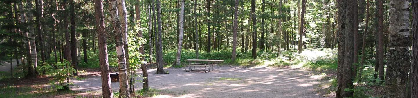 Camp Seven Campground site #30 picnic table and fire pit among the trees.