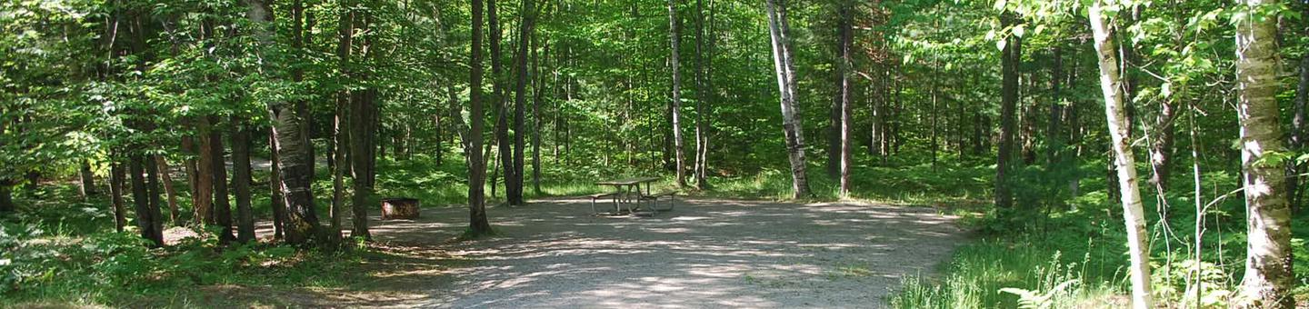 Camp Seven Campground site #36 picnic table and fire pit among the trees.