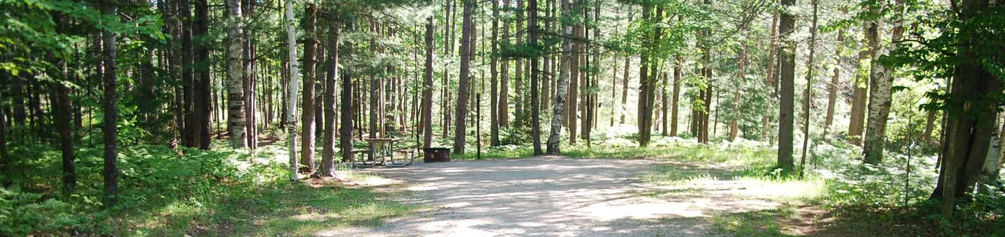 Camp Seven Campground site #37 picnic table and fire pit among the trees.