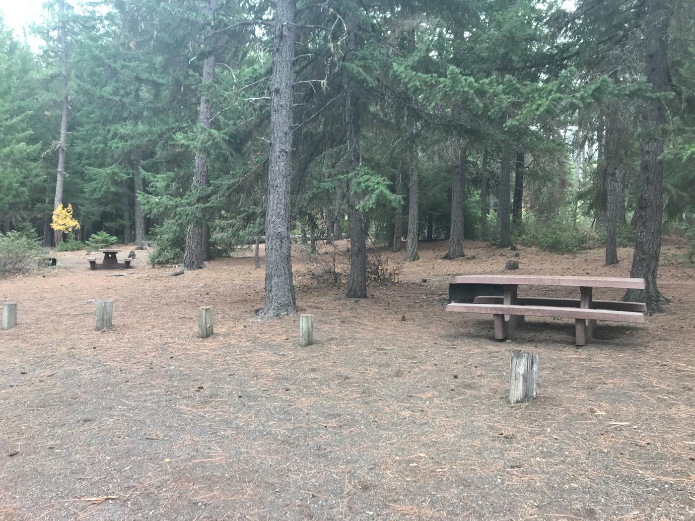 Link Creek Site #1